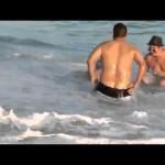 Orca encalhada