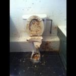 Aprenda a desentupir um vaso sanitário