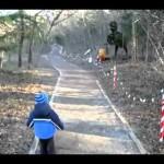 Épica reação do garotinho ao ver dinossauro robô em parque Japonês