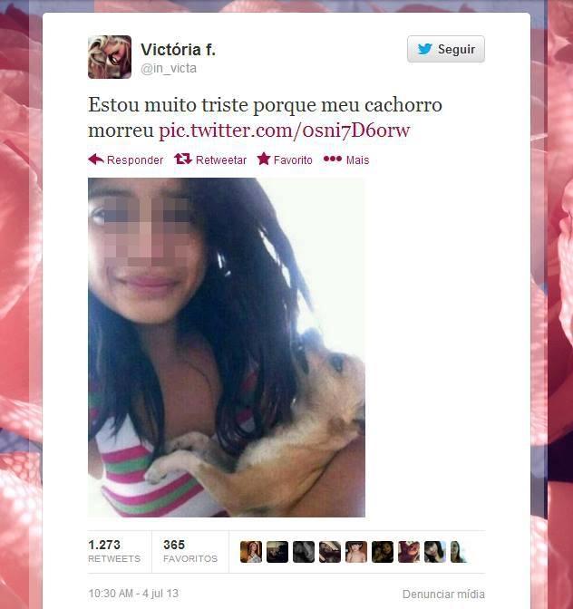 cachorro_morreu
