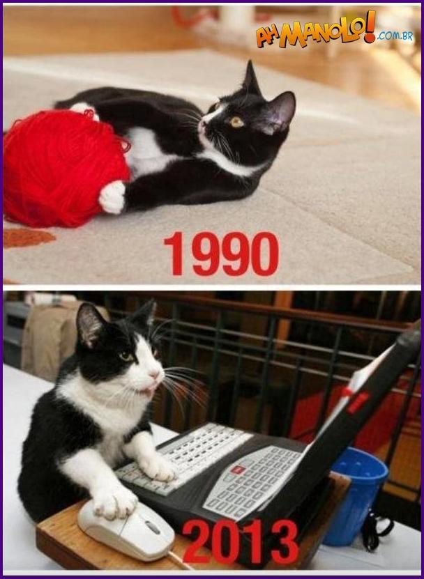 cats-online