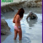 humor-animal-planet