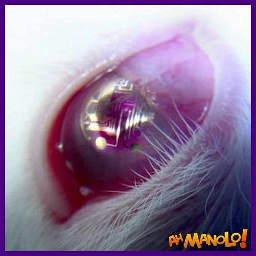 lentes-de-contato-5